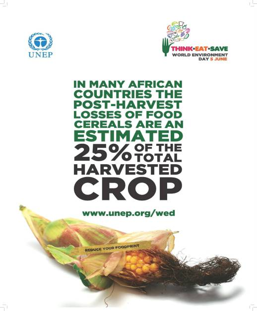 In many countries the post-harvest losses of food cereals are an estimated 25% of the total harvested crop