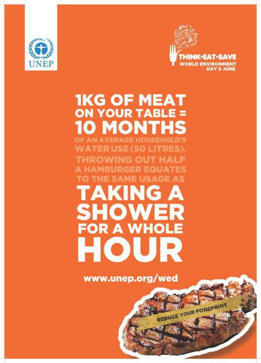 1kg of meat on your table= 10 months of an average household's water use (50 litres)
